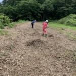 田作り0618-2