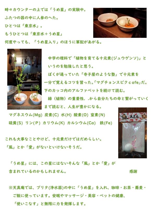 umeboshi010831